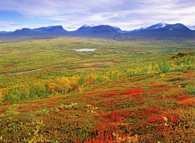 Abisko nationalpark i Lappland.