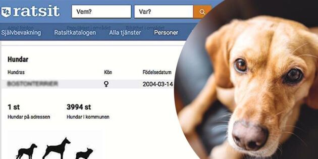Ratsit: Vi tar inte bort hunduppgifter