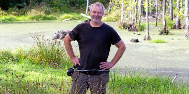 Övergödningen minskar i Östersjön