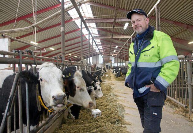Anders Nilsson är tredje generationens lantbrukare på gården i Skråmered som han drivit sedan 1996. Enligt honom finns det många fördelar med Procross, bland annat att man bryter all inavel som annars kan vara ett problem på renrasiga djur.