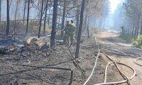 Två män åtalas för flera skogsbränder