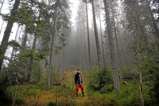 Mikael nöjd i sin skog där han kan börja jobba igen. Det är mörkt och dimmigt, men vackert.