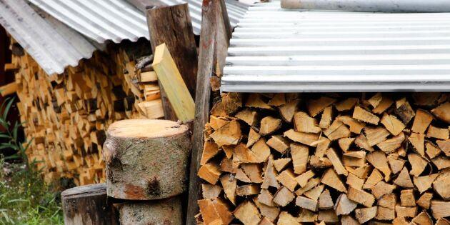 GUIDE: Bästa veden att elda med – träslag för träslag