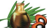 Självförvållat beroende av palmolja