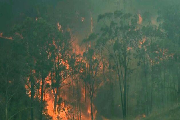Bränderna rasar vidare i Australien, här i Hillville i New South Wales, Australien.