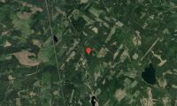 Ägarbyte för skogsfastighet i Gävleborg
