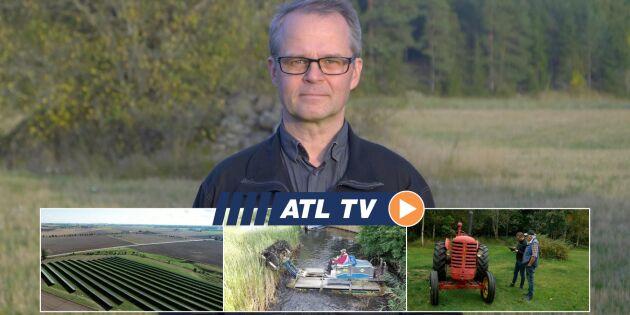 ATL TV: Här blir det el i stället för vete