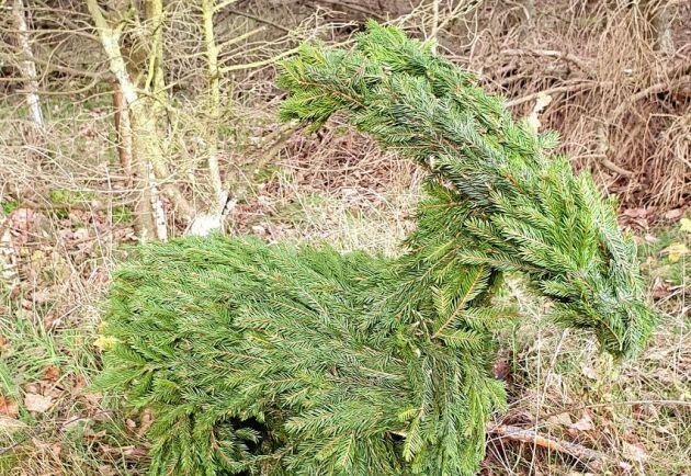 Svenska Julbockar UFs julbock har blivit populär redan innan försäljningen har startat.