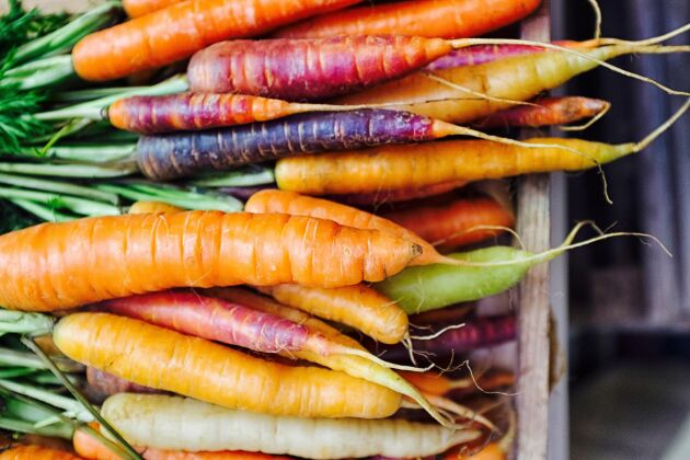 Frys in dina morötter – perfekt sätt att spara en stor skörd eller bara en enstaka morot.