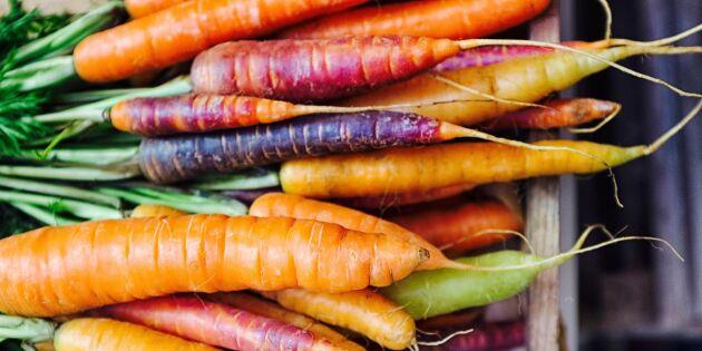 Undvik svinn: Så här fryser du bäst in dina morötter