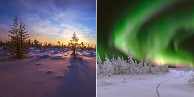 Allt fler turister väljer Sverige som resmål