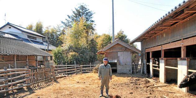 Nu kan du bli bonde i Japan