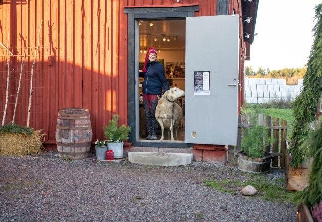 För att det inte ska bli trångt i butiken har Saga Planting Svensson fått vara dörrvakt - och på köpet fått ny kontakt med kunderna. Flera har sagt att de besökt en gårdsbutik för första gången i år.
