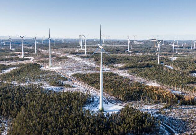 Vindkraftsparken i Markbygden utanför Piteå.