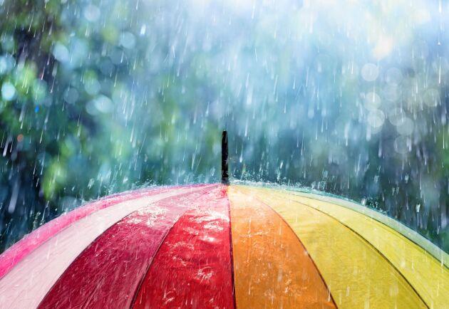 Vissa blir glada av regn. Kanske föddes de just en sådan dag.