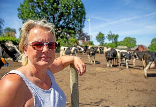 """Under den värsta värmeböljan dog en av de äldre korna på Gunnaröds gård och nu har brunnarna börjat sina, två månader tidigare än normalt. """"Vi köper nio kubikmeter vatten per dygn"""", säger Carina Sonesson."""