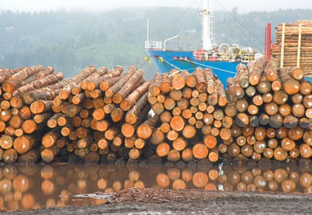 Den kinesiska träindustrin har inte kommit igång efter det kinesiska nyåret, och med hamnarna fulla av europeiskt barkborrevirke har det blivit stopp för Nya Zeelands export av rundvirke.