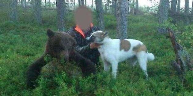Jakthärvan i Norrbotten avgörs nu i hovrätten