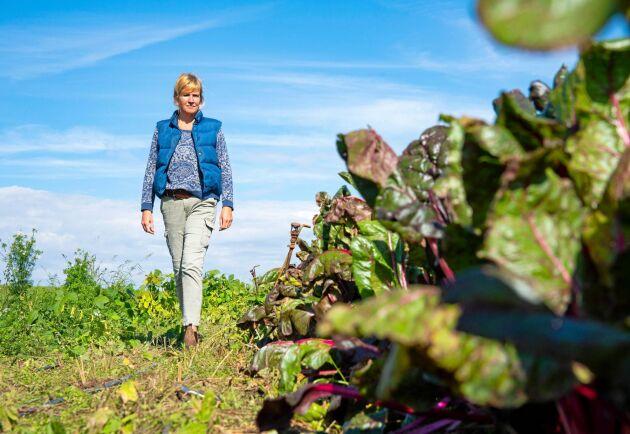Fler kvinnor än statistiken visar, leder lantbruksföretag, enligt undersökning.