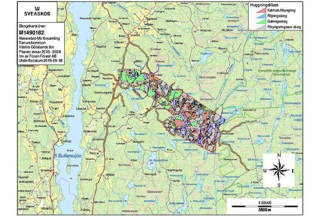 Skogskarta över Kynnefjäll.