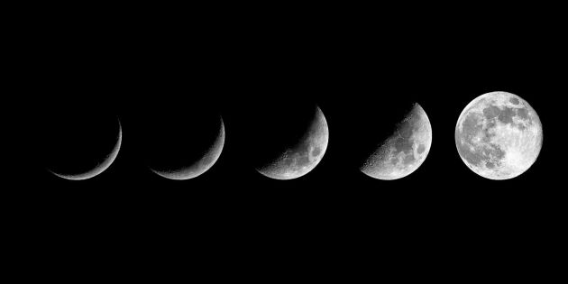 Få koll på månens fyra faser