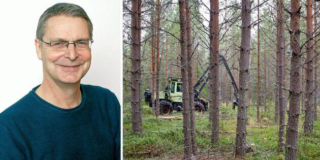 Så läser du din skogsbruksplan