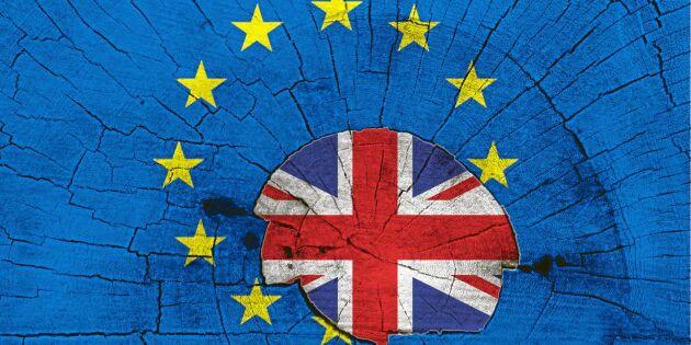 Fler moln än brexit på himlen