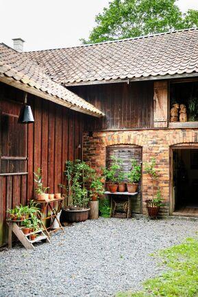 I ett hörn av gården säljer Maria plantor av Ornäsbjörk och lokala perenner.
