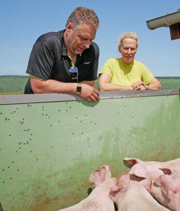 """Magnus Johansson och Lena Lindahl vid en av """"grisverandorna"""". Där kan grisarna gå ut och bli duschade var tjugonde minut vid plus 20 grader och däröver."""