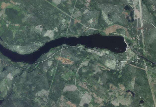 Samma område nära Laforsen i Ljusdals kommun före branden.