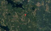Nya ägare till skogsfastighet i Gävleborg