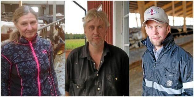 """Bönder sågar mjölkfri satsning: """"Helt absurt"""""""