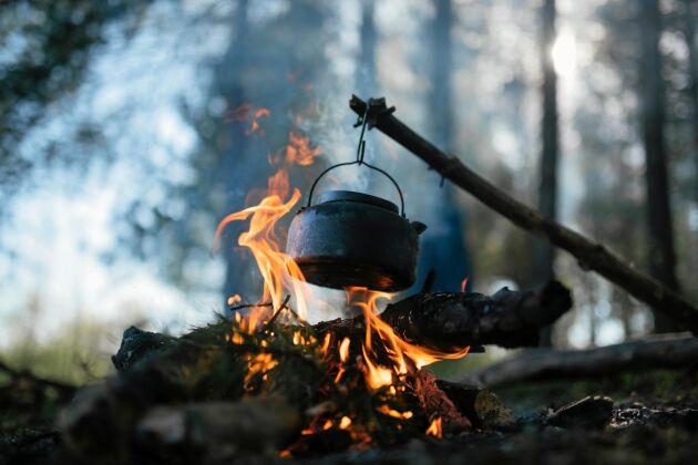 En lägereld i skogen är något vi människor behövt och älskat sedan urminnes tider.
