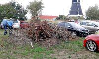Skogsbilden: Rishög på parkeringen