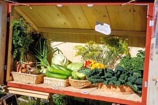 Sara byggde en låda vid vägen där kunderna själva plockar grönsaker .
