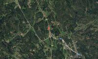 Ny ägare till skogsfastighet i Östergötland