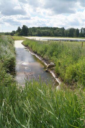 Ett dräneringsföretag på 350 hektar fyller på vatten. Utloppet är vattenförande året om.