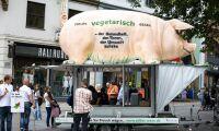 Så ser bönders problem med djurrättsaktivister ut i Europa