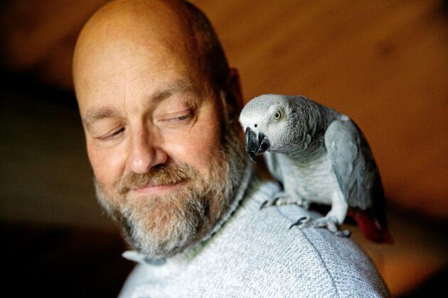 Papegojan Consuela ser till att det inte blir alltför tyst hos Ulf. Hon imiterar till exempel ett brandlarm.