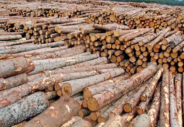 Härjningarna av granbarkborre ger högt timmerflöde till sågverken, och nu sänks timmerpriserna.