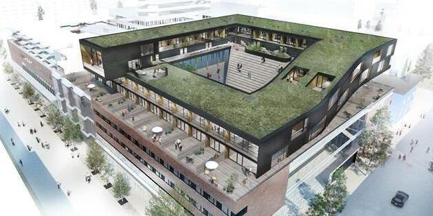 Husen på taket byggs med KL-trä