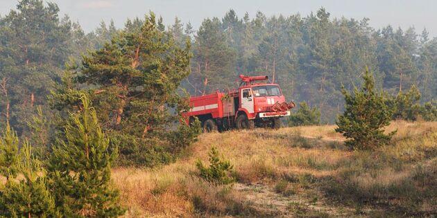 Skogsbolag varnas för maskinellt skogsarbete