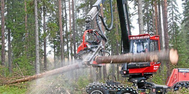 Skogsägare tror på stigande priser