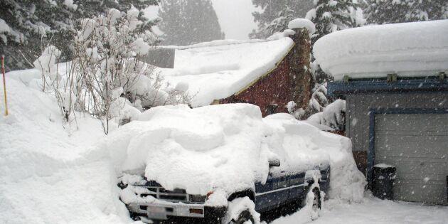 Hur snöigt är det hemma hos dig? Skicka in en bild och dela med dig