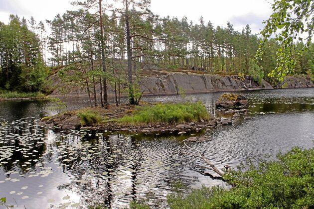 Sävsjön och Bergvattnet hänger ihop och är en viktig del i Tivedens vattensystem norr om sjön Unden. En mängd dammar vittnar om en kulturhistorisk miljö med sågar, kvarnar och bruk som nu är på väg att undanröjas.