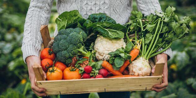 """Coop öppnar gårdsbutik på nätet: """"Möjlighet för små lokala producenter"""""""
