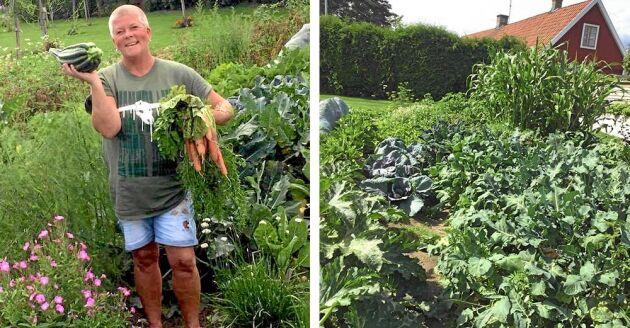 Lotta framför hennes och sambon Anders frodiga grönsaksland på villatomten.