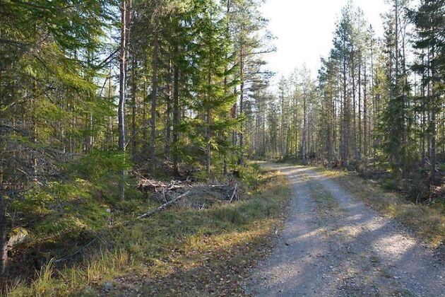 Albäck norr om Enköping.