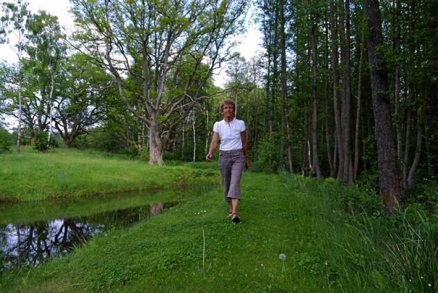 Lyfter kvinnor. Birgit Timner är aktiv i föreningen Spillkråkan, som vill stärka kvinnors inflytande i skogsnäringen. Både hon och dottern Cecilia Timner har tagit motorsågskörkort. Cecilia har gått grundkursen i Hållbart familjeskogsbruk på Linnéuniversitetet.