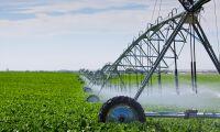 Minskad vattenförbrukning hjälper svenska bönder i torkan